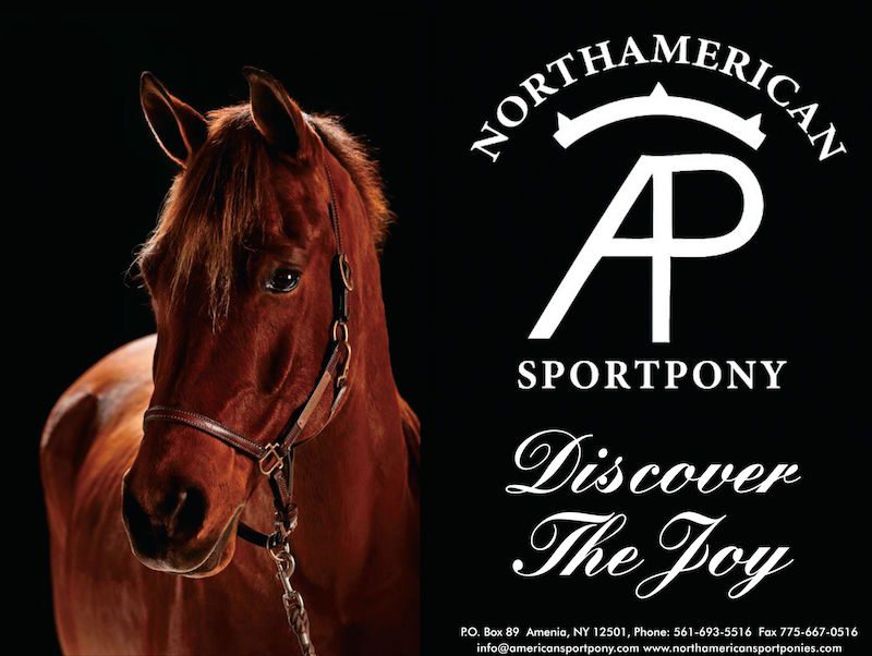 The North American Sportpony Registry (NASPR) Gains Ground